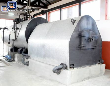 Wood-fired steam boiler
